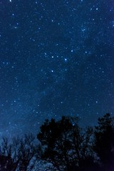 Shine of star (RenField - Toel-ul Laputa) Tags: sky japan night 35mm star nikon kagoshima 日本 nikkor 鹿児島 kirishima 長時間露光 星空 夜空 星 ニコン 星景 単焦点 霧島市 d800e