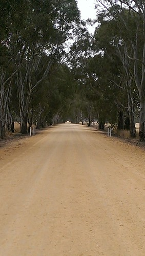Near Kybybolite, South Australia