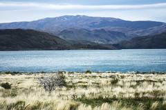 DSC_0873 (hugo.affonso) Tags: torresdelpaine patagnia puntaarenas puertonatalles