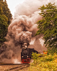 Full steaming en route (Foto Martien) Tags: train deutschland photo foto details picture steam brocken locomotive info documentation information geotag meterspoor description explanation harz trein duitsland brockenbahn dampflok dampflokomotive a77 germay steamlocomotive stoom geotagging hsb dampf locomotief stoomlocomotief sachsenanhalt 1000mm informatie fullsteamahead smalspoor dreiannenhohne toelichting harzerschmalspurbahnen 1meter sonyalphadslr 9972373 beschrijving metregauge meterspur martienuiterweerd carlzeisssony1680 martienarnhem harznarrowgaugerailways martienholland fotomartien sonyslta77v sonyalpha77 geotaggedwithgps harzersmalspoorbanen cheminsdefervoietroiteduharz