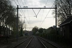 Utrecht Maliebaan II (Tiago Alves Miranda) Tags: netherlands station utrecht track nederland railway via holanda estao linha nederlandsespoorwegen prorail dutchrailways lxico caminhodeferro utrechtmaliebaan tiagoalvesmiranda