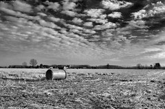 Clouds & hay bale (Stievesox) Tags: autumn bw italy panorama clouds rural landscape countryside country campagna filter hay balla bale campaign autunno 18200 lombardia bianconero paesaggio lombardy fieno filtro rotoballa rurale fotonikon3100