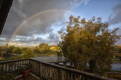 Morning Rainbow (x-ray tech) Tags: street morning sky tree wet beautiful rain weather clouds canon interestingness high nice interesting rainbow backyard colorful dynamic angle mark balcony awesome wide neighborhood ii handheld 5d capture range hdr 1635 ef1635mmf28l 5dmarkii