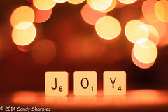 Joy (Sandy Sharples) Tags: christmas reflection dof message bokeh letters joy scrable treelights