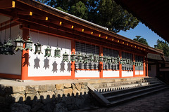 Kasuga Taisha Sanctuary, Nara Prefecture, Japan, (Rita Willaert) Tags: japan shrine lanterns nara sanctuary kasugataisha kasugagrandshrine stonelanterns naraprefecture bronzelanterns kasugataishaheiligdom