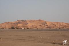 Dune di Merzouga (andrea.prave) Tags: sahara nature sand desert dune natura arena morocco maroc marocco  deserto sabbia merzouga erfoud   almamlaka errachidia arfoud  visitmorocco almaghribiyya   tourdelmarocco alrshdiyya