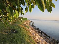 SEA (PINOY PHOTOGRAPHER) Tags: world al asia middleeast east saudi arabia middle saudiarabia khobar alkhobar