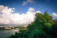 _DSC4153.jpg (SchmidbauerS) Tags: grenada semester resa sommar karibien