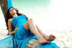 Shruthi Hassan 7th Sense Spicy photos (Tech Uday) Tags: photos hassan spicy sense shruthi