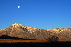 Moon and Mount Tom near Bishop, CA (Ideaholic) Tags: california moon mountain desert valley bishop owens mounttom mttom