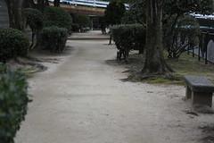 IMG_6553