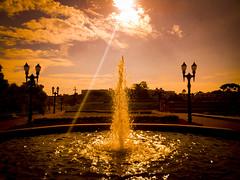 Sol no Parque Tanguá (Eduardo PA) Tags: parque windows sol paraná nokia phone curitiba microsoft wp 1020 tanguá lumia pureview