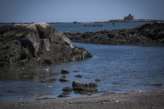 Low tide (CTfoto2013) Tags: blue light sea sky sun mer house seascape seaweed beach water reflections newcastle island lumix coast soleil seaside marine rocks eau waves mood waterfront outdoor seagull marin newengland newhampshire ile wave atmosphere pebbles panasonic bleu lumiere lowtide maison vagues atlanticocean reflets plague mouette rochers algues galets oceanatlantique mareebasse gx7