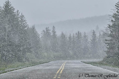 Spring Snow Highland Scenic Highway (travelphotographer2003) Tags: usa snow cold weather clouds spring may westvirginia relaxation exploration idyllic appalachia blackmountain freshness appalachianmountains purity tranquilscene alleghenymountains midmay beautyinnature route150 pocahontascounty nationalscenicbyway highlandscenichighway