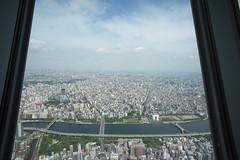 東京スカイツリー 2016年6月12日 (Tokutomi Masaki) Tags: trip travel japan tokyo walk 東京 散歩 2016 skytree 東京スカイツリー スカイツリー 東京路地裏散歩