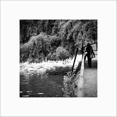 Au-dessus de l'eau (Guillaume et Anne) Tags: street city bw france canon noiretblanc nb strasbourg ill alsace f2 135 135mm 6d 135mmf2 ef135