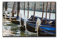 All Tied Up (seagr112) Tags: venice italy boat europe gondola venezia grandcanal gondolas sonyalpha sonya6000