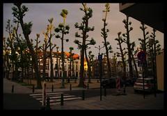 JUNI0753 (Leopoldo Esteban) Tags: street brussels belgium belgique bruxelles bruselas rue belgica straat leopoldoesteban