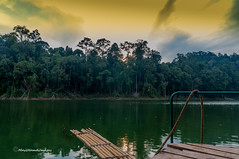 bamboo raft at dawn... (MailHamdi) Tags: statepark sunset nature nikon scenery sigma bamboo malaysia raft belum ismaelhma mailhamdi ismaelhmaphotography mailhamdiphotopages mailhamdiimages boathouase