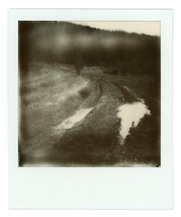 Puddles on the road (Polaroid 600 type version) (Andrey Timofeev) Tags: road trees light sky bw white mist black mountains reflection film nature wet grass misty fog analog forest project landscape polaroid haze view foggy deep rusty spots 600 type instant analogue dust leak puddles crimea impossible      supercolor         635cl       eskiyurt   03may2015 dateofproduction0214