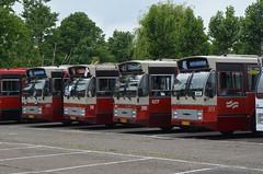 11.06.2016 (XII); 50 jaar standaardbus (chriswesterduin) Tags: hbm htm