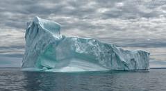 Frozen (martinaschneider) Tags: ocean newfoundland iceberg