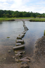 stepping stones (willanjames) Tags: stones stepping ogmore