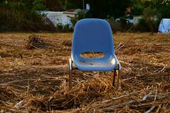 spectator ~ espectador (Rodrigo Uriartt) Tags: art golden blue loneliness chair field goldenhour tele israel betyehoshua greatcolors fujifilm xpro1 spectator espectador