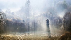 Ghost [Explore] (Jean-Luc Peluchon) Tags: shadow mist field weather fog mystery rural forest lumix haze funny ghost ombre panasonic odd story mysterious unusual phantom legend campaign campagne brouillard spectre forêt champ brume fantôme stange coutryside météo étrange légende mystère mystérieux fz1000