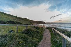 M1140394.jpg (meerecinaus) Tags: longreef beach collaroy newsouthwales australia au