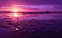 M A G I C A L (Ri) Tags: iphone cangio sunrise magical magnificent