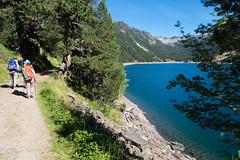 On longe le lac jusqu' son point le plus haut (alainlecroquant) Tags: montagne lac pyrnes nouvielle oule bastan infrieur suprieur milieu barrage artigusse parking vache cheveaux refuge refugedebastan