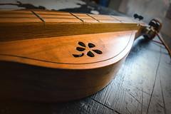 dulcimer-003 (Yvonne Rathbone) Tags: technical 1855mmf3556gvr d5500 flickrlounge nikkor nikon woodinanyform carving curve curves dulcimer flower music musical wideangle