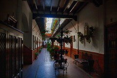 Interior de un patio sevillano - zona de Triana - Sevilla - Espaa (Carlos M. M.) Tags: andaluca sevilla canon100d hdr