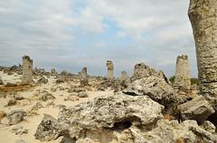 The Stone Forest, Bulgaria (Morkovica) Tags: bulgaria nikon d5100 desert pobitikamani
