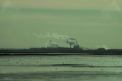 Industry and nature. (Thicks Aside) Tags: birds wales estuary water industry