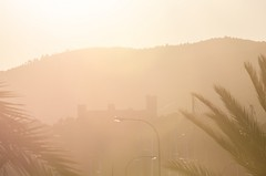 DSC_0110 (mkk3a) Tags: bellver hiszpania majorka mallorca palma palmademallorca