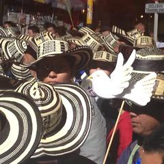 (carocampalans) Tags: paz democracia polticas sombrero paloma smbolo marcha movimientossociales opininpblica