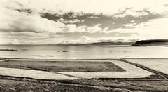 Cut Field _5373 (hkoons) Tags: kotbã½likuklarans northwesticeland skagipeninsula westfiords westfjords iceland strandir bay fiord fjord inlet island magic north saltwater sea sorcery water witch witchcraft