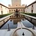 Alhambra Palace_6669