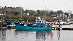 "Fishing Boat BD 87 ""Chale Bay"" Lymington (fstop186) Tags: blue winter cold boat fishing day harbour working olympus solent mooring pro zuiko omd lymington berth em1 chalebay olympusm1240mmf28 bd87"