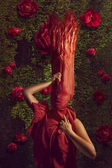 Rose (Katelin Kinney) Tags: red flower green beautiful rose garden hair bag ginger leaf pretty mask character surreal vine redhead troll cloth suffocate smother