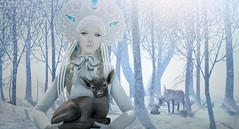 Neige (♛ Baronne ♛) Tags: christmas xmas winter light shadow portrait pet white snow nature look fashion animal fairytale forest pose season fur french reindeer zoo mesh sweet top hiver avatar tie style queen attitude secondlife precious bow neige accessories earrings gown piece blanche sweetness pure foret gems blanc tale rennes accessoires headdress accessory saison ison metaverse slavic thearcade junbug pixicat ispachi thesecretstore contedenoel