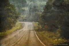 Down Rogers Road (Passion4Nature) Tags: road rural michigan textures rollercoaster upnorth thrillride charlevoixcounty magicuniverse magicunicornverybest textureinfinitebook