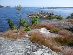 Lid (annamaart) Tags: summer archipelago sommar skrgrd stockholmarchipelago stockholmsskrgrd lid
