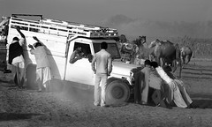 7086 Got stuck-- Rajasthan , India (ngchongkin) Tags: india atwork soe rajasthan giveme5 musictomyeyes autofocus finegold thegalaxy frameit vivalavida flickrbronzeaward heartawards betterthangood goldstaraward earthasia flickrestrellas thebestshot thebestshots doubledragonawards worldofdetails visionaryartsgallery wonderfulasia theredgroup theyellowgroup rememberthatmoment administrationexquisite niceasitgets thelooklevel1red rememberthatmomentl2 infinitexposure infinitexposurel2