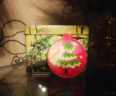 Christmas gift. (ksenon68) Tags: dog pets cat julien isabel yosd elleo mystickids