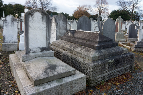 Mount Jerome Cemetery & Crematorium is situated in Harold's Cross Ref-100478