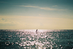 Insignificance (moist memory) Tags: ocean life light sea sky people film japan analog landscape tokyo lomo lomography nikon asia fujifilm lonely analogue fe2