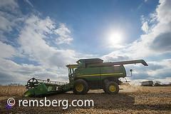 Combine harvesting soybeans in Jarrettsville, Maryland, USA (Remsberg Photos) Tags: sky usa sun field farm farming harvest maryland machinery crop combine ag soybean agriculture harvester harvesting jarrettsvillemd